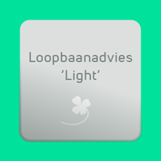 Loopbaanadvies Light